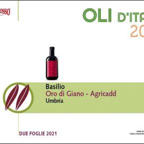 Italian Extra Virgin Olive Oil Basilio